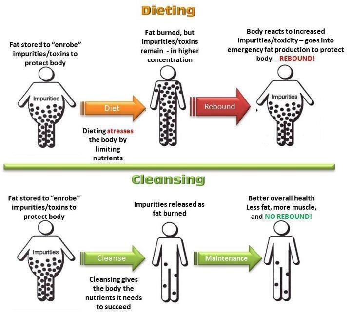 dieting vs cleansing