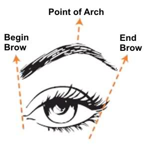 eyebrow outline