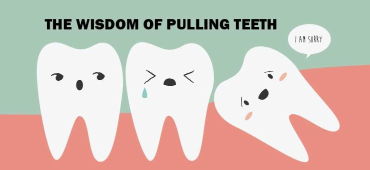 Image result for wisdom tooth cute
