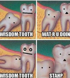 wisdom tooth cute